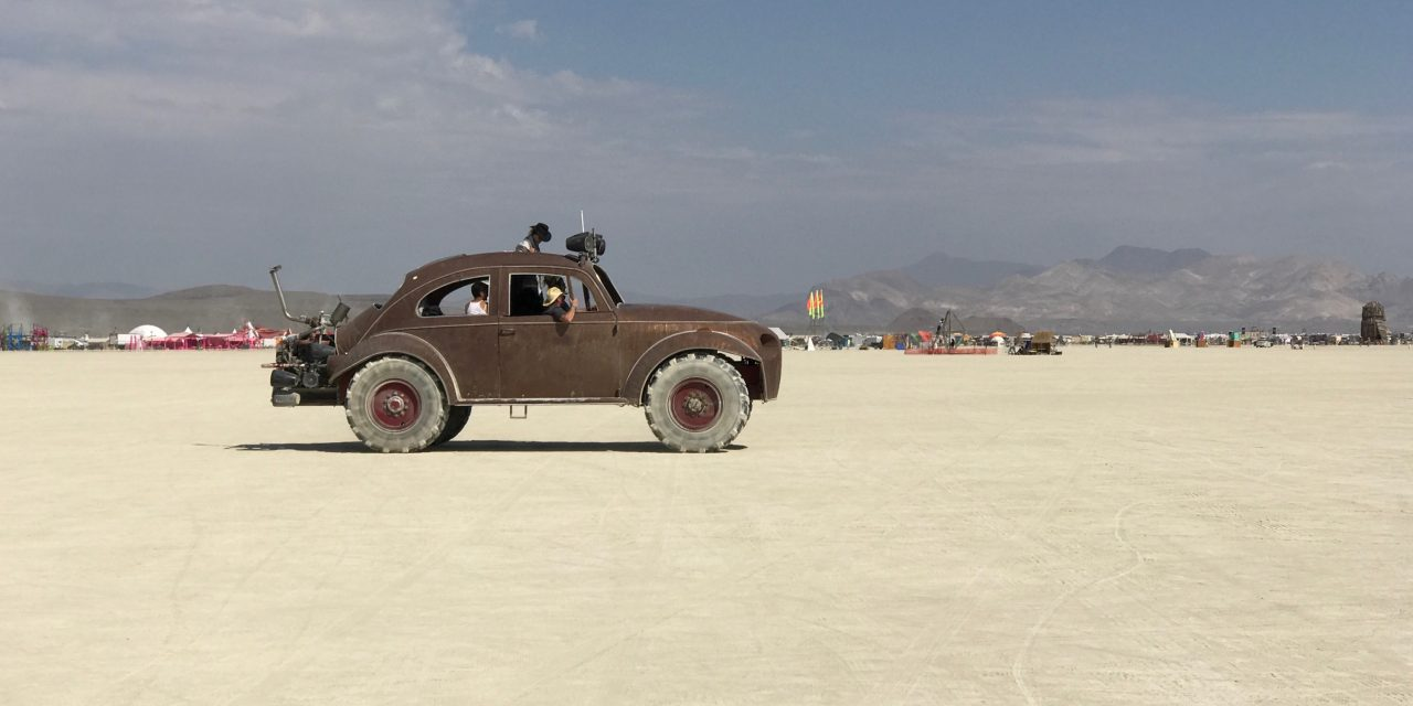 Burning Man Beetle