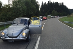Black Forest VW Bug tour